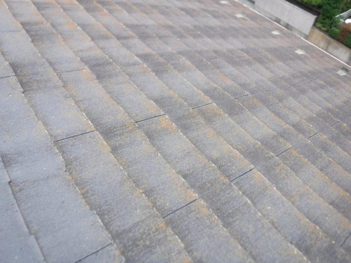屋根重ね葺きの施工前(苔の発生)