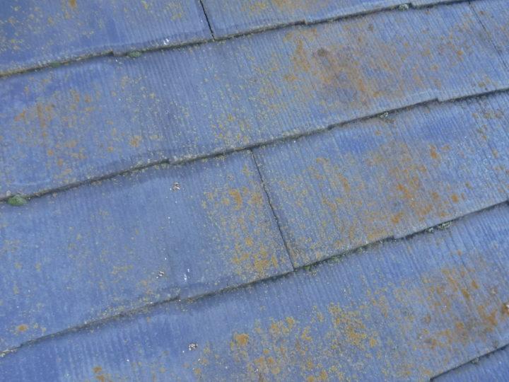 屋根塗装の施工前(スレート瓦の藻の発生)